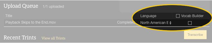 Trint Adobe Premiere Pro Extension Screen 9